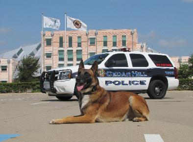 PSD Kennels Police dog purchased and beloved by Cedar Hills Police dept